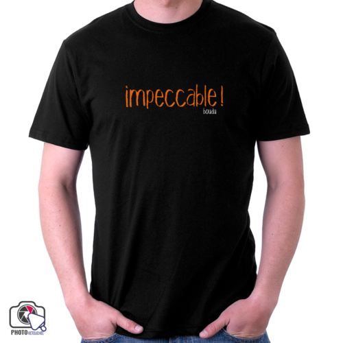 "t-shirt boudu homme ""impeccable"""